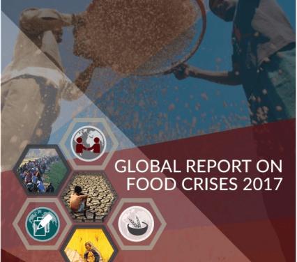 FAO: La situación económica en Venezuela podría generar escasez de alimentos y medicinas