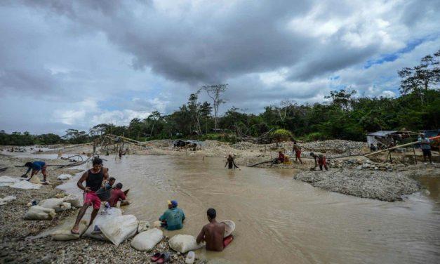 Alianza Venezolana para la Salud alerta sobre explosión de la malaria